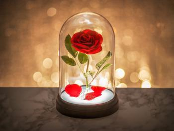 Skønheden og Udyret Lampe