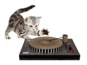 Vinylafspiller Kradsebræt til Kat